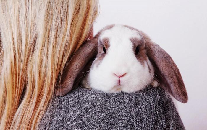 Das Bild der Kategorie Tiere zeigt eine Frau, die einen Hasen über die Schulter hält.